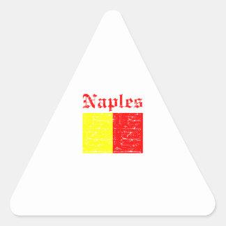 Naples City Designs Triangle Sticker