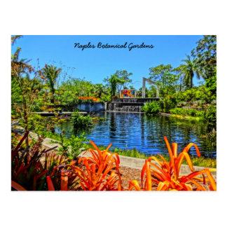 Naples Florida Botanical Garden - Mosaic Wall Postcard