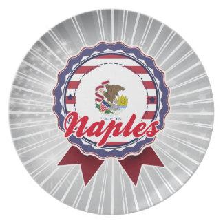 Naples, IL Dinner Plate