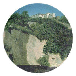 Naples Party Plate
