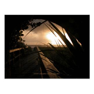 Naples Sunset Postcard