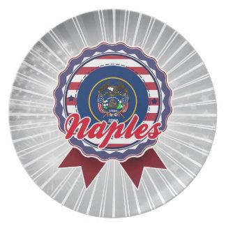 Naples, UT Party Plate