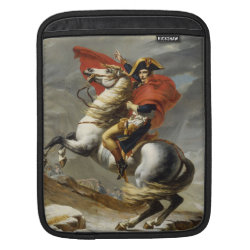 iPad Sleeve with Saint Bernard Phone Cases design