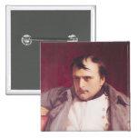 Napoleon después de su abdicación pin