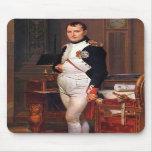 Napoleon que presenta en su estudio alfombrilla de raton