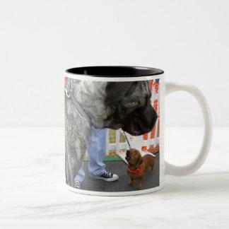 Napoleonic Complex? Two-Tone Coffee Mug