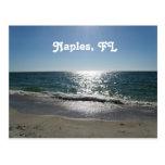 Nápoles, la Florida Tarjetas Postales