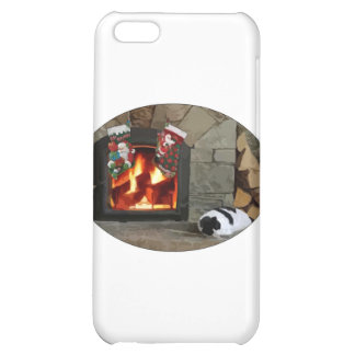 Napping by the Fireplace iPhone 5C Cases