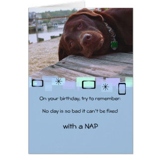 Napping Chocolate Lab All Occasion Greeting Card