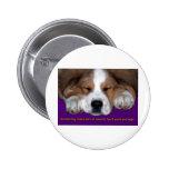 Napping Dog Graduation Pinback Button
