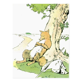 Napping Fox Leaning Against Tree Postcard