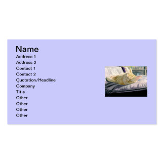 Napping in the Sunshine Double-Sided Standard Business Cards (Pack Of 100)