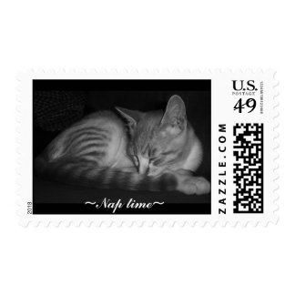 Napping kitten , ~Nap time~ Postage Stamps