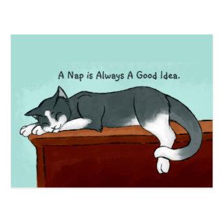 Napping Kitty Postcard