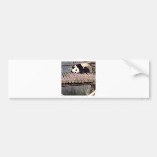 Napping Panda Car Bumper Sticker
