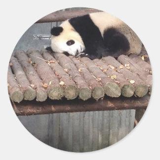 Napping Panda Classic Round Sticker