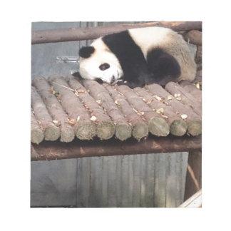 Napping Panda Notepad