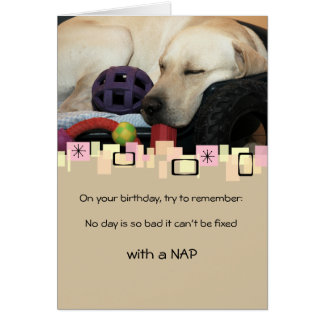 Napping Yellow Labrador Retriever All Occasion Stationery Note Card