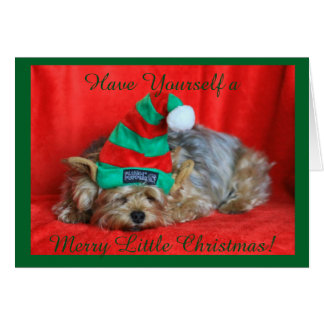 Napping Yorkie Wearing Elf Hat Card