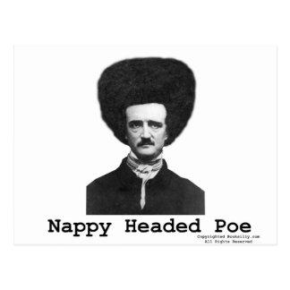 Nappy Headed Poe Postcard