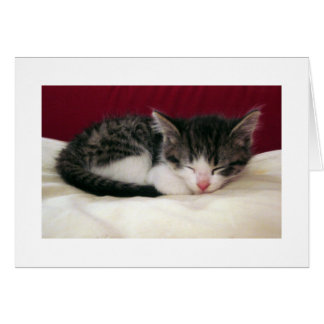 Nappy Time Kitten Greeting Card