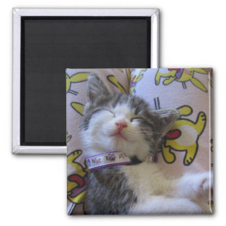 Nappy-time Kitty 2 Inch Square Magnet