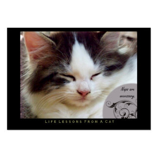Naps Life Lessons From a Cat ACEO Art Trading Card Business Card