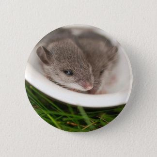 Naptime Baby Mice Button
