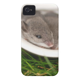 Naptime Baby Mice Case-Mate iPhone 4 Case