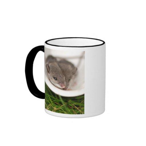 Naptime Baby Mice Coffee Mugs