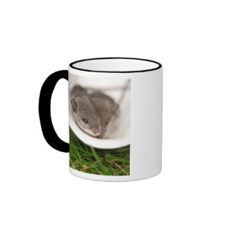 Naptime Baby Mice Ringer Mug