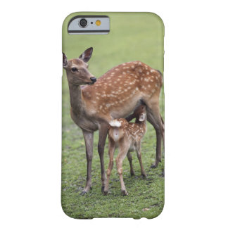 Nara Prefecture, Honshu, Japan 2 Barely There iPhone 6 Case