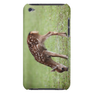 Nara Prefecture, Honshu, Japan Barely There iPod Case