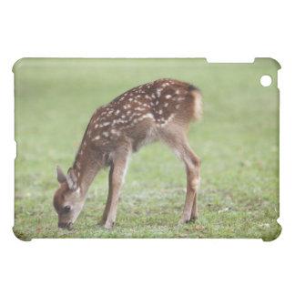 Nara Prefecture, Honshu, Japan Cover For The iPad Mini