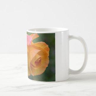 Naranja bonito y color de rosa rosado taza básica blanca