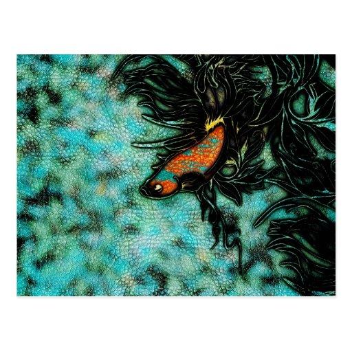 Naranja brillante y pescados beta azules postal