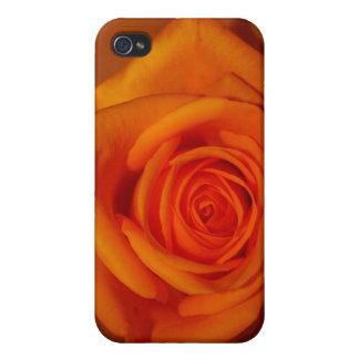 Naranja colorized subió contra fondo anaranjado iPhone 4 fundas