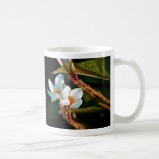 naranja de la flor de los leus colorized tazas