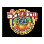 Naranja de la joya de la corona de País de Gales d Tarjeta Postal