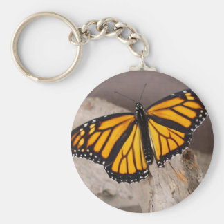 naranja de la mariposa con alas llavero redondo tipo pin