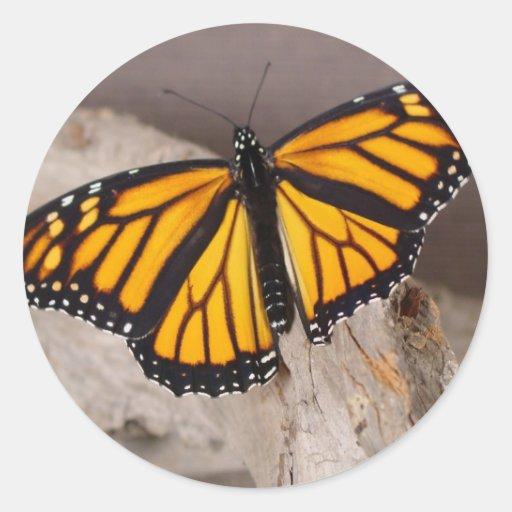 naranja de la mariposa con alas pegatina redonda