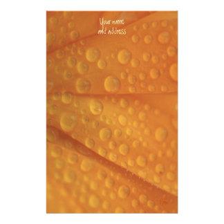 naranja del fizzie papeleria