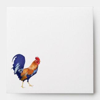 Naranja del gallo dentro del sobre cuadrado de la
