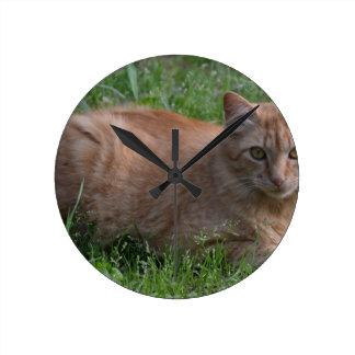 Naranja del gato de Tabby Relojes De Pared