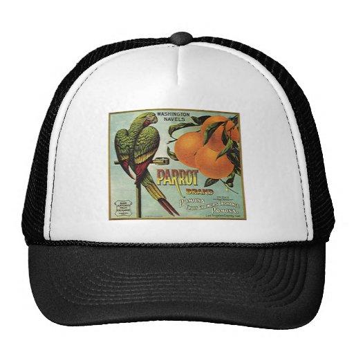 naranja del loro gorros bordados