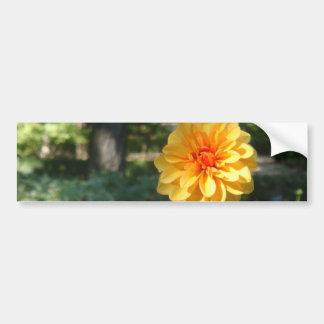 naranja flower2 pegatina para auto
