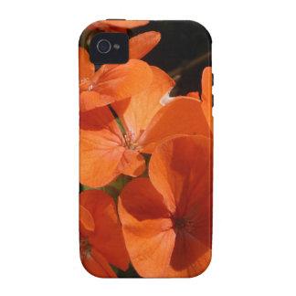 Naranja iPhone 4/4S Funda
