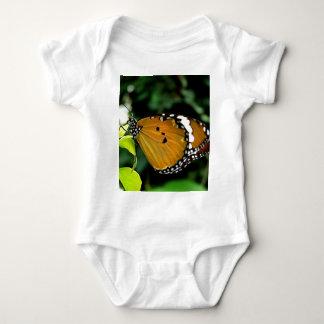Naranja, mariposa blanco y negro en la hoja polera