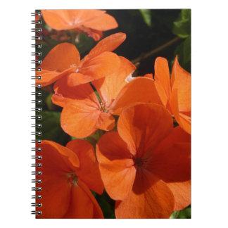 Naranja Notebook
