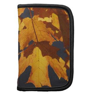 Naranja y rojo del resplandor de las hojas de otoñ planificadores